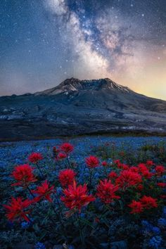 Millions of stars shine bright above Mount St Helens on a clear summer night (OC)[1335x2000] : EarthPorn