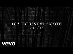 Los Tigres Del Norte - Ataúd (Lyric Video) - YouTube