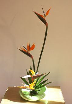 Moribana by Ligia Ikebana Arrangement Floral Ikebana, Arrangements Ikebana, Creative Flower Arrangements, Tropical Floral Arrangements, Beautiful Flower Arrangements, Tropical Flowers, Beautiful Flowers, Cactus Flower, Exotic Flowers