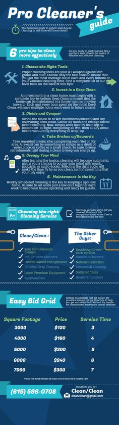 Pro Cleaner's Guide