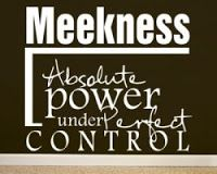 20 Best GOODNESS/MEEKNESS images | Surely goodness, mercy ...