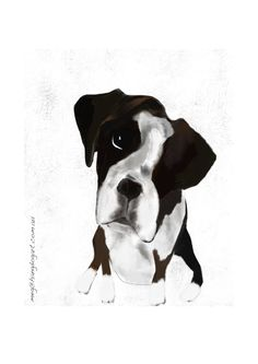 'Will do better' fine art print by Meg Anderson. Click through for more unframed prints. Dog Cards, Dog Illustration, Boxer Dogs, Whimsical Art, Dog Lovers, Cow, Fine Art Prints, Studio, Baby