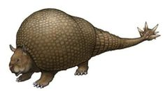 Image result for morningstar tailed glyptodon