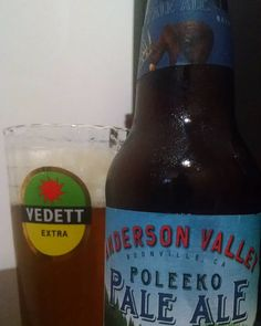 #poleeko #paleale #ale #andersonvalley #beer #cerveja #pin