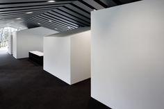 Gallery of Office in Forest / SUGAWARADAISUKE - 10