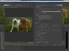 Video Edit Component