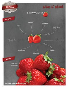 Strawberries are my wine fave aroma, defining grapes such as Pinot Noir and wines such as Beaujolais Sweet Champagne Brands, Pinot Noir Wine, Wine Vineyards, Wine Tasting Party, Types Of Wine, Wine Cocktails, Vitis Vinifera, Wine And Beer, Wine Making