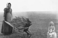 Buffalo chips (also called meadow muffins - as seen here) were collected by the pioneer children so their families could burn them as a source of cooking heat and warmth.The chip had to be very dry
