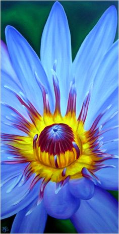 Waterlily Lotus Flower oil painting by Maui Hawaii artist © Anna Keay. Fine art tropical flowers via keayplaza.com