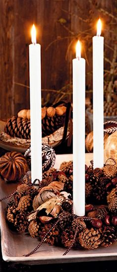 Christmas Candles embellished with natural elements become Fall/Christmas decor.