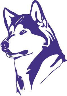 University Of Washington Huskies >> 1579 Best University Of Washington Images In 2019 Uw Huskies