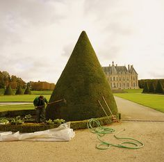 Topiary: This looks like Vaux-le-Vicomte, it's either Louis XIII or mid/late 19th Century. Beautiful, either way.