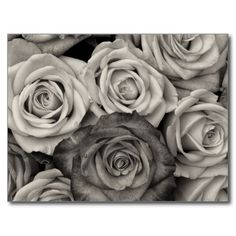 Pretty Black and White Roses Bouquet of Flowers Postcards SOLD on Zazzle