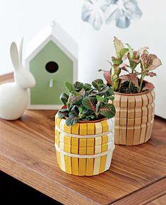 Vasetto per le piante fatto con mollette da bucato