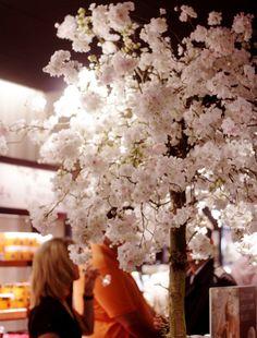 cherry blossom decoration