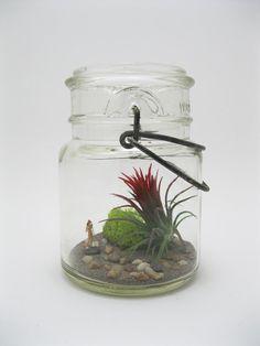 plant. mason jar. match made in heaven.