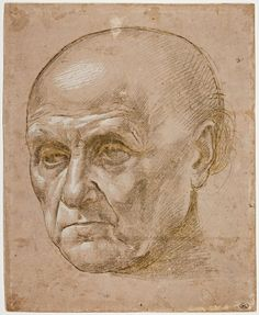Inventaire du département des Arts graphiques - Tête de vieillard chauve, de trois quarts vers la gauche - GHIRLANDAIO Ridolfo