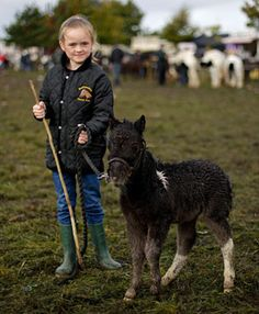 Hannah Kelly with her Falabella miniature horse at the Ballinasloe horse fair in Co Galway yesterday. The annual event attracts up to 100,000 visitors from all over the world. Photograph: Julien Behal/PA Wire