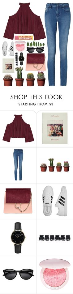 """""""Cacti"""" by teaandcupcakes22 ❤ liked on Polyvore featuring W118 by Walter Baker, Calvin Klein, Chloé, adidas, ROSEFIELD, Accessorize, Guerlain and Burt's Bees"""