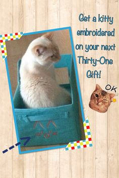 Thirty one loves cats