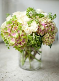 magical coral pink hydrangea...