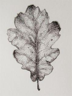 Feuille de chene/oak leaf dessin a l'encre pointille ink drawing in pointillism Black Pen Drawing, Leaf Drawing, Nature Drawing, Dotted Drawings, Cool Art Drawings, Detailed Drawings, Pen Drawings, Hatch Art, Stippling Drawing