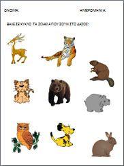 Rho Gamma, Sigma Chi, Back To School, School Stuff, Animal Crafts, Winnie The Pooh, Worksheets, Disney Characters, Fictional Characters