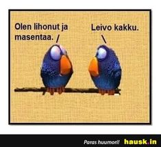 Olen lihonut ja.... - HAUSK.in Haha Funny, Funny Texts, Hilarious, Lol, Cheer Me Up, More Words, Sarcasm, Beautiful Pictures, Memes