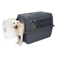 Petmate Pet Porter II