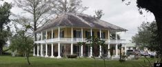 Medway Plantation~Historic Plantations hit South Carolina Market in Tough Economy