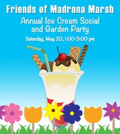 join fundraiser at Lazy Dog Cafe to support Madrona Marsh