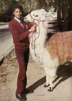 Michael Jackson and his lama Louie in front of his home in Encino Michael Jackson Smile, Michael Jackson Thriller, Michael Love, Michael Jordan, Paris Jackson, Jackson Family, Janet Jackson, Sheila, King Of Music