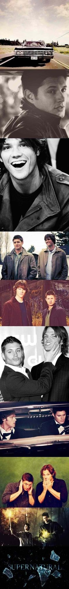 Dean and Sam Winchester. They are  beauties!!