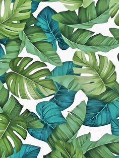 Tropical leaves ii art print by catyarte. Tropical Art, Tropical Leaves, Tropical Prints, Cute Wallpapers, Wallpaper Backgrounds, Leaves Wallpaper, Wallpaper Ideas, Tropical Wallpaper, Leaf Art