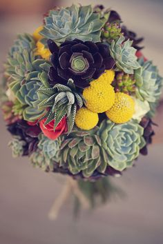 Fun! Succulent Bouquet - beautiful indeed!    Photography by its-beautiful-here.com
