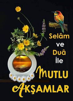 N.ünal Sunset, Flowers, Poster, Instagram, Allah, Sunsets, Royal Icing Flowers, Flower, Florals