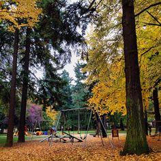 Portland park!