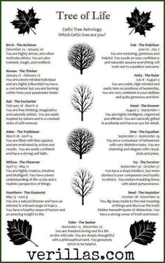 wicca celtic zodiac garden tree birth # Celtic Trees and Personality Traits. I am not sure that this is traditional, but it does seem to be accurate. Magick, Witchcraft, Tarot, Celtic Mythology, Book Of Shadows, Occult, New Age, Tree Of Life Meaning, Tree Tattoo Meaning