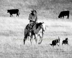 Working Art Photography, Rustic Photography, Real Cowboys, Western Riding, Ranch Life, Cowboy And Cowgirl, Working Dogs, The Ranch, Dog Life