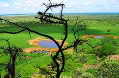 Kenya Photography, Kenya Landscape, Countryside, Trees, Watering Hole, Safari, Wall Art by PhotosbyAnnaMarie on Etsy https://www.etsy.com/listing/220277653/kenya-photography-kenya-landscape