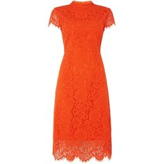 Ivy & Oak Lace cocktail dress with cap sleeves ($145) ❤ liked on Polyvore featuring dresses, orange, women, lace cap sleeve dress, lace cocktail dress, orange dress, cap sleeve dress and crew neck dress