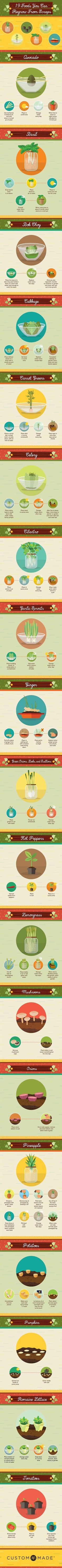 For other gardening tips head over to Mind, Body, & Soul After Baby ~ http://www.mindbodyandsoulafterbaby.com/food/gardening/