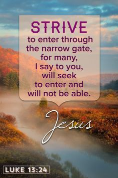 Strive to enter through the narrow gate, for many, I say to you, will seek to enter and will not be able. Luke13:24
