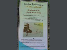 Olmi-Cappella: En passant le pont génois de la Tartagine : sentier didactique en amont, et sous-bois - France-Voyage.com