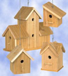 images of bird house patterns | ... birds this spring with these four simple to make rustic bird houses