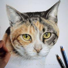 20 Ideas cats drawing happy for 2019 Realistic Drawings, Art Drawings, Pencil Drawings, Black Pen Sketches, Cat Drawing Tutorial, Polychromos, Diy Cat Bed, Hyperrealism, Cat Sleeping