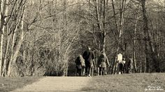 ~Into The Forest~ By Ernie Kasper #candid   #people   #trees   #nature   #campbellvalleypark
