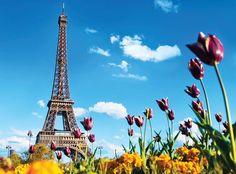 Giá vé máy bay HCM Paris http://www.abay.vn/ve-may-bay-theo-loai/gia-ve-may-bay/gia-may-bay-ho-chi-minh-paris