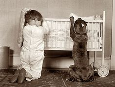 I love these classic photos of Pit Bulls..