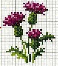 Wildflower thistle cross stitch.